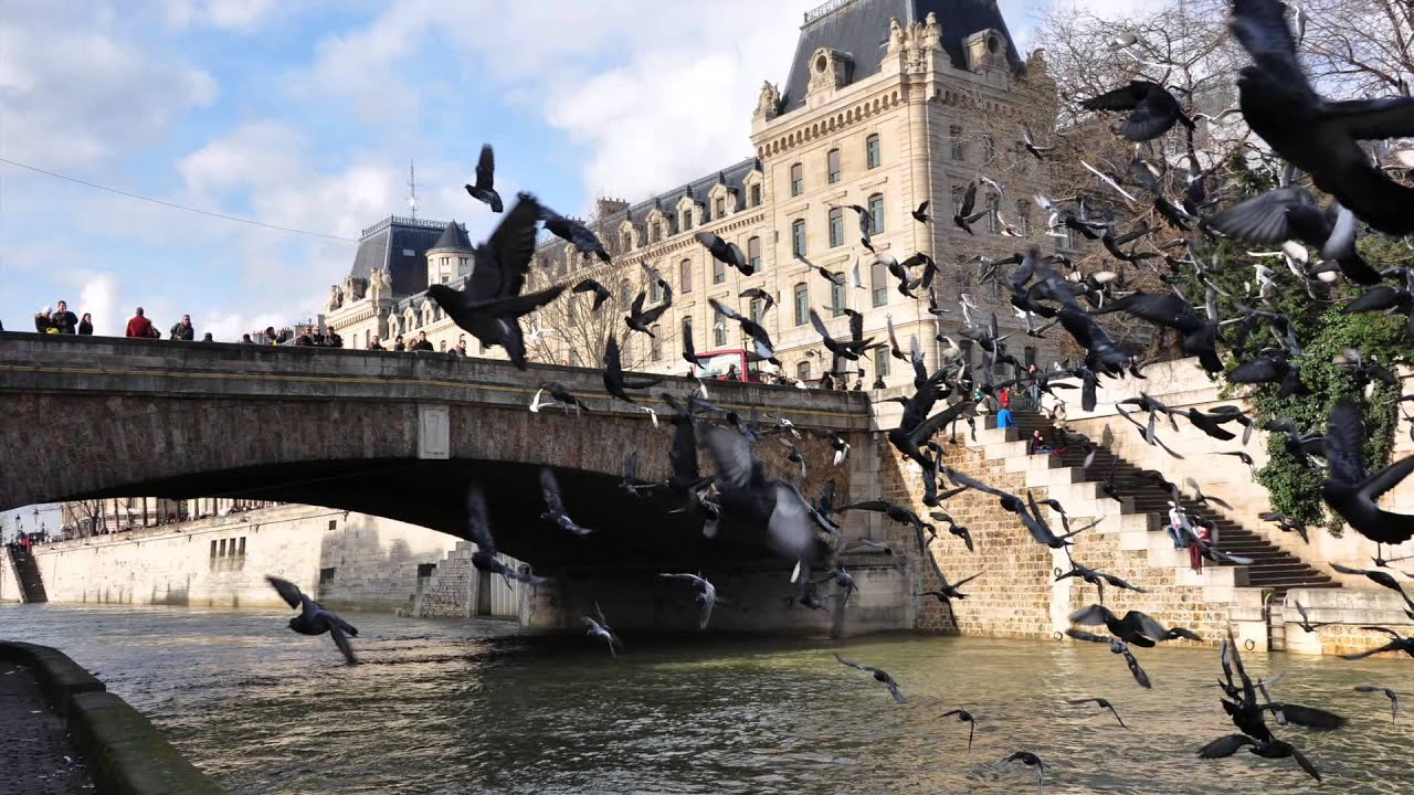 sous les ponts de paris coule la seine youtube. Black Bedroom Furniture Sets. Home Design Ideas