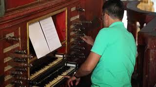 Portugal Algarve Faro Cathedral and organ / Portugal Algarve Faro Cathédrale et orgue