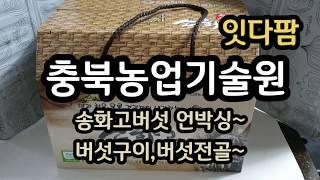 충북농업기술원 잇다팜 농산물 인터넷 판매