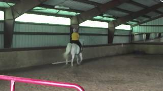 New horse Skye, longest fart in the world