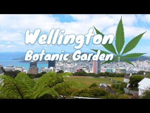 Wellington Botanic Garden | New Zealand Attractions [Full HD]