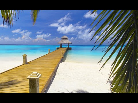 10 Things To Do In Bahamas - 2018