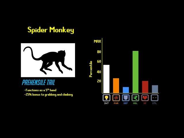 The Primate Tier List