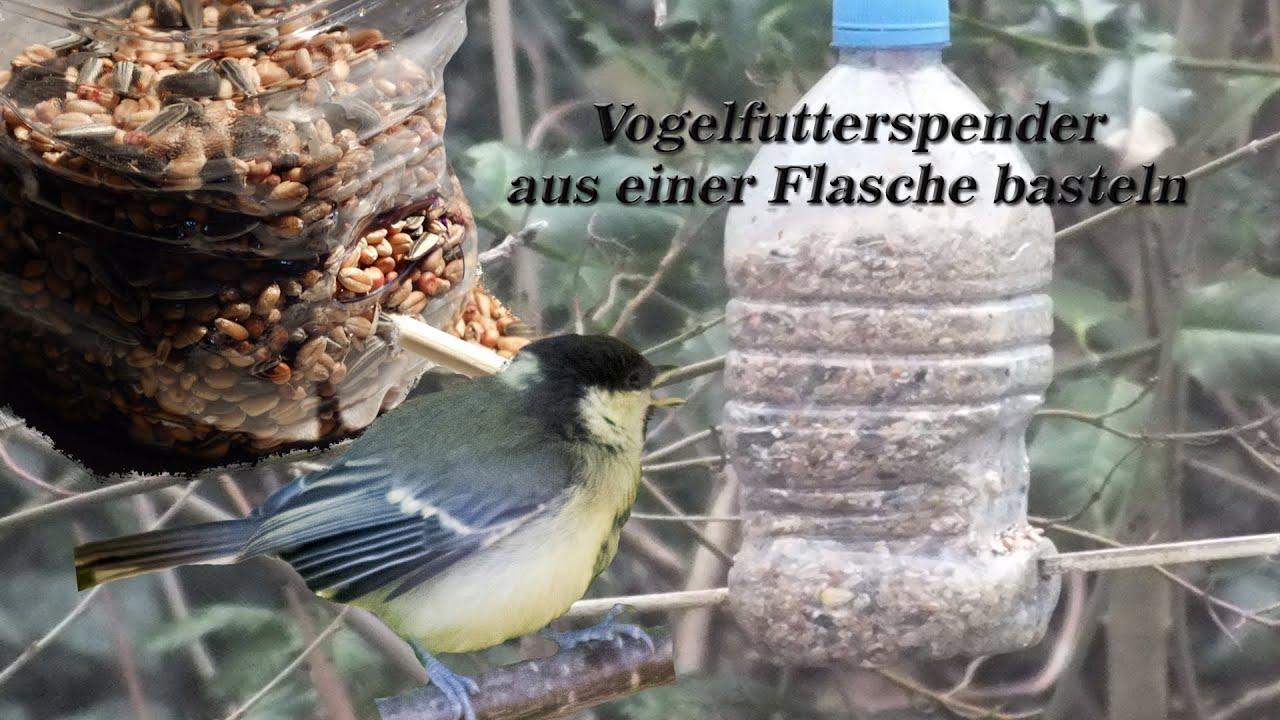 Vogelfutterspender Aus Einer Flasche Basteln Youtube