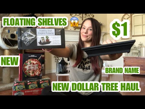NEW DOLLAR TREE HAUL*HUGE*NEW ITEMS*BRAND NAME*