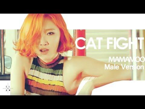 [MALE VERSION] MAMAMOO - Cat Fight
