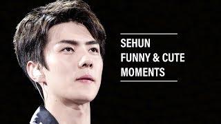 EXO Sehun Funny & Super Cute Moments
