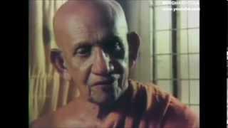 Buddhism in a nutshell - ven.Balangoda Ananda Maitreya Thero