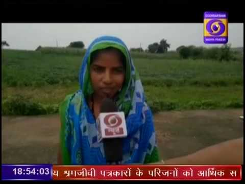 Urdu Ground Report Madhya Pradesh: SOIL HEALTH CARD JHABUA