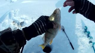 Рыбалка по последнему льду / закрытие зимней рыбалки / озеро чаны