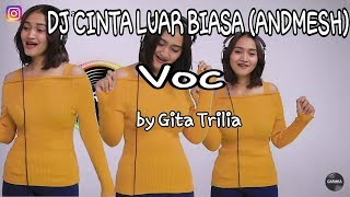Dj Cinta Luar Biasa Voc By Gita Trilia