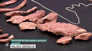 Egyelőre helyén marad a Magyar Természettudományi Múzeum 20-02-14