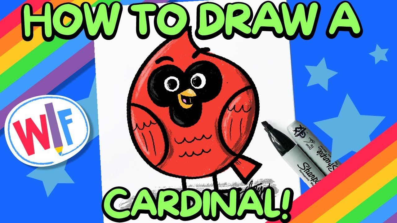 How To Draw A Cardinal!