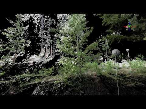 BANR Trees Scanned with Terrestrial LiDAR