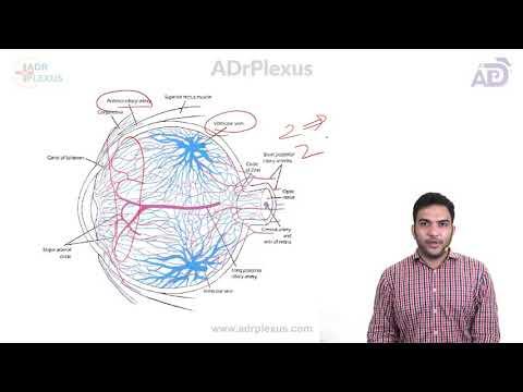UVEA Dr Syed Moosa - ADrPlexus 2018-11-14 15:51
