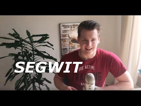 Programmer Explains Segregated Witness In Bitcoin And Litecoin