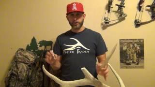 Elk Antler Repair & Coloring DIY Antler Trader