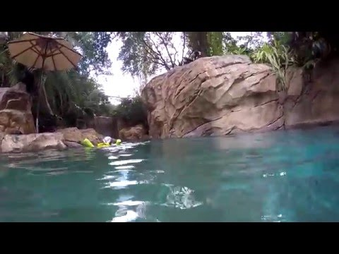 Wind away river Discovery Cove 25th December 2015