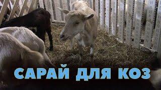 Мой новый сарай для коз!