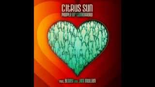 Citrus Sun - What Color Is Love