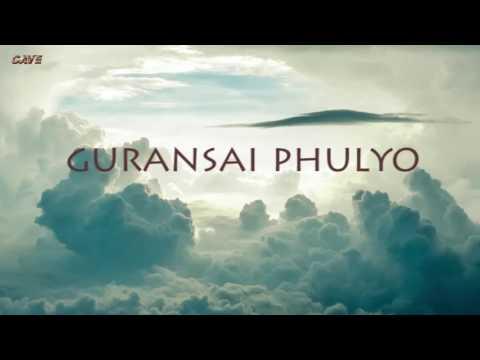 1974 AD गुराँसै फुल्यो वनैमा   Gurasai Fulyo Banaima   Karaoke with Lyrics   Best Quality