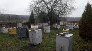 Изготовление кормушки для пчёл своими руками