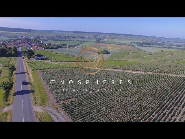 OenoSpheres - Découvrir la/le Champagne - FR
