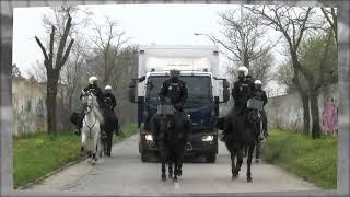 ¿Conoces la Unidad de #Caballería de la Policía Nacional?