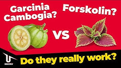 Forskolin vs Garcinia Cambogia – Which One Actually Works?