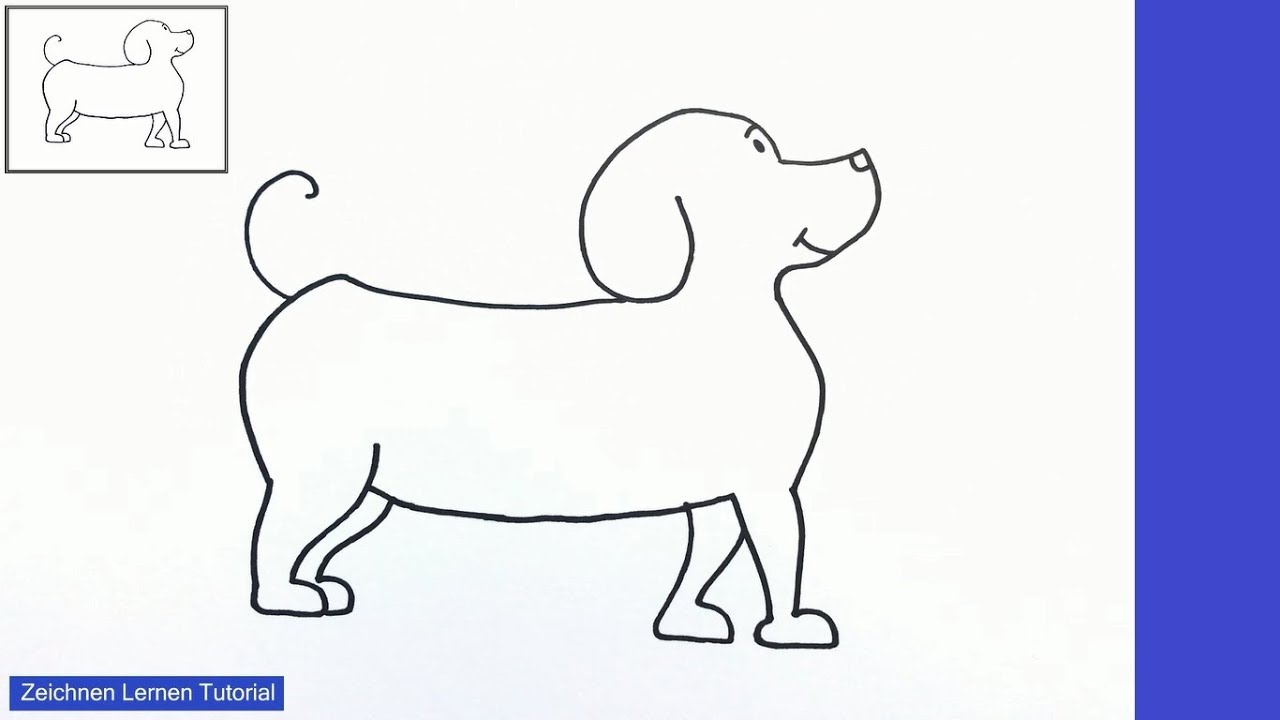 hund zeichnen lernen einfach schritt für schritt für