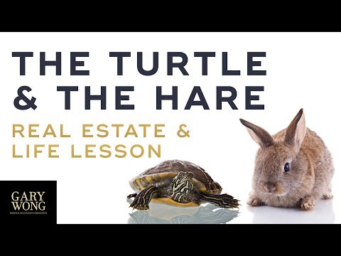 The Turtle and The Hare A Lesson In Real Estate and In Life | Vancouver Real Estate