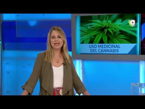 Hay una motivación, en el país, de que se acepte el cannabis para uso medicinal