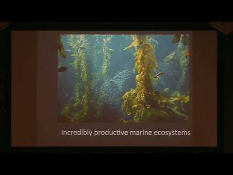 Janaury 2017 From Shore to Sea Lecture: Change in Ocean Biology in the Santa Barbara Channel