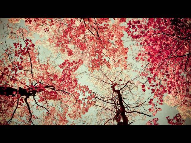 LENZMAN - Retrospective mix for Friction's BBC Radio 1 show (03.03.2013)