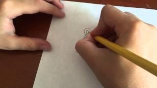 Ozi'den Dünyaya - Kolay yöntemle fare nasıl çizilir ?