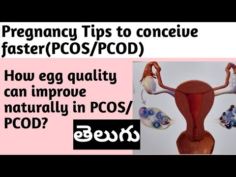 pregnancy-tips-|-pcos/pcod-|-how-egg-quality-can-improve-naturally-to-conceive-pregnancy.