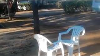 Video Live At Camping  Armação De Pêra , Algarve Portugal  XOXO