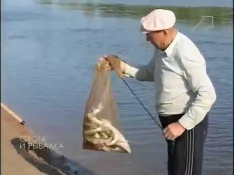 Клёвое место  Рыбалка в Астраханской области  Река Ашулук  Эпизод 84