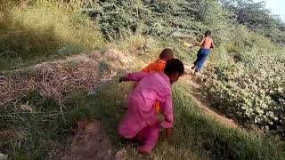 funny videos pakistani pathan   by real earning websites