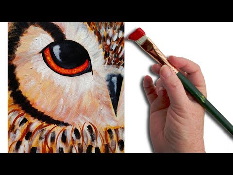 Simple Owl EYE Beginner Acrylic Painting Lesson  The Art Sherpa