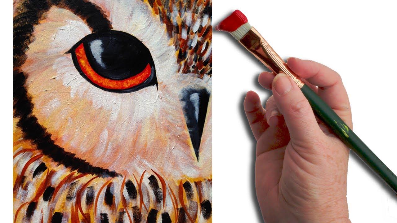 Simple Owl Eye Beginner Acrylic Painting Lesson The Art