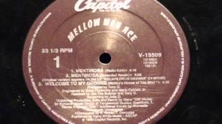 Mentirosa (extended remix) - Mellow man ace
