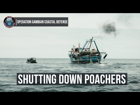 Shutting Down Poachers in The Gambia