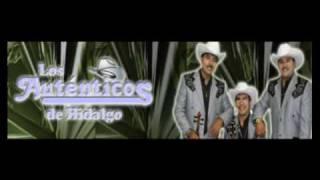 Los Auténticos de Hidalgo  . Mi chatita     (Sólo audio)