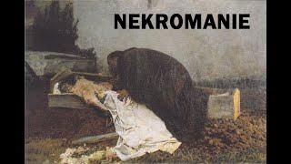 NEKROMANIE - DARK ELECTRO/INDUSTRIAL/HARSH/AGGROTECH/ DARK TECHNO MIX 13 by L17