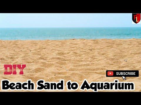 How to treat beach sand to aquarium!