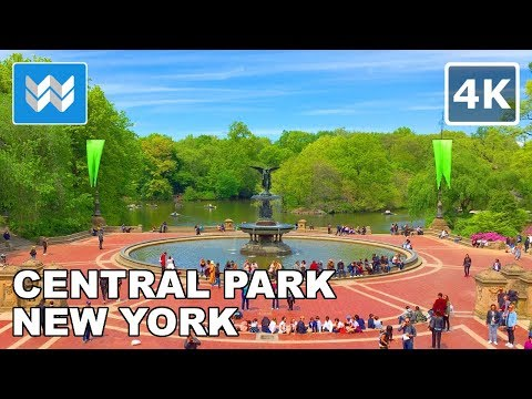 Walking around Central Park in Manhattan, New York City 【4K】