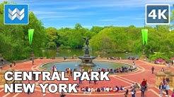 Walking around Central Park in Manhattan, New York City 【4K】