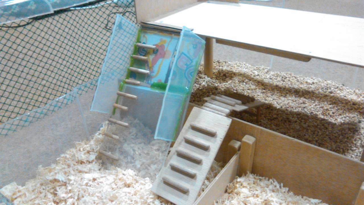 How to build a hamster cage youtube for How to build a hamster cage