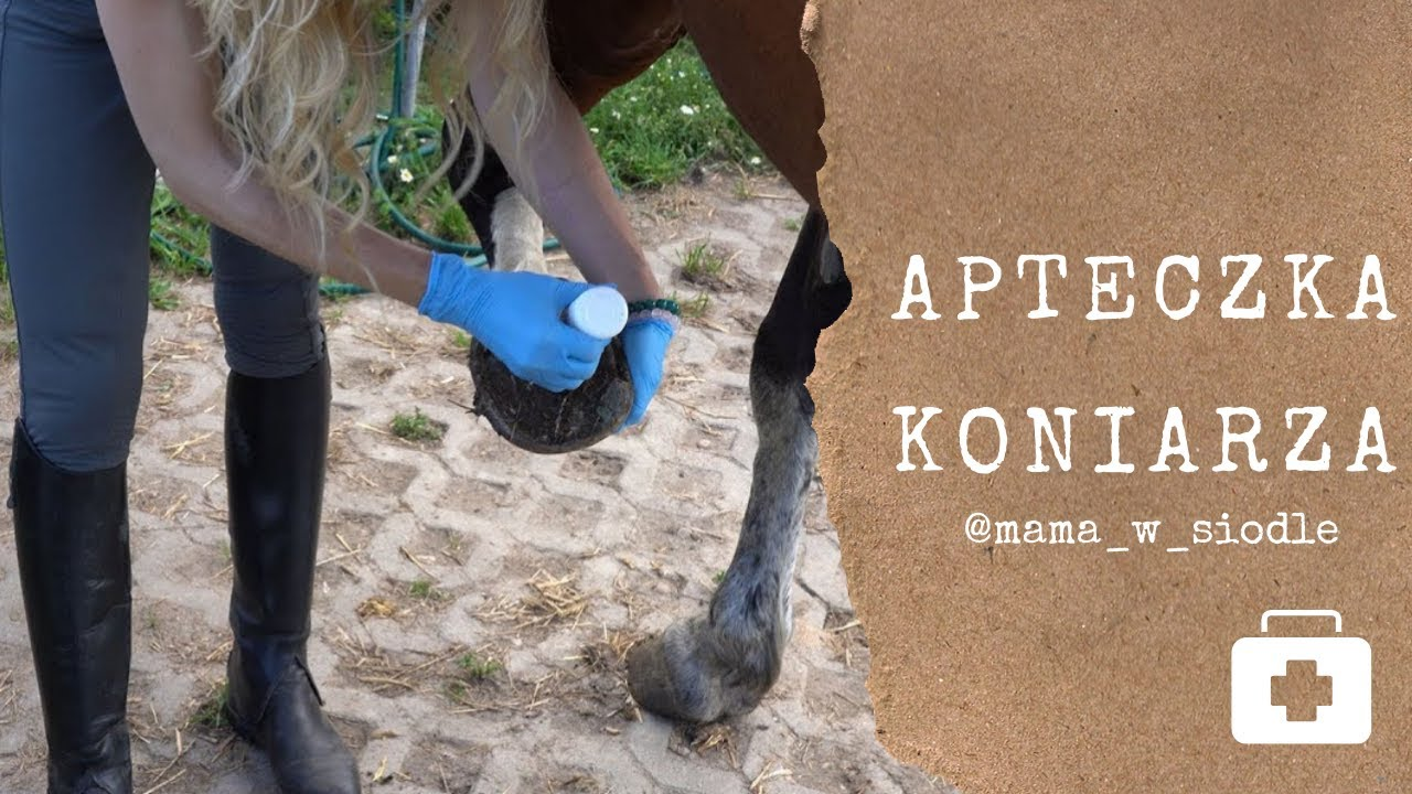 Jak wyczyścić kopyto u konia?
